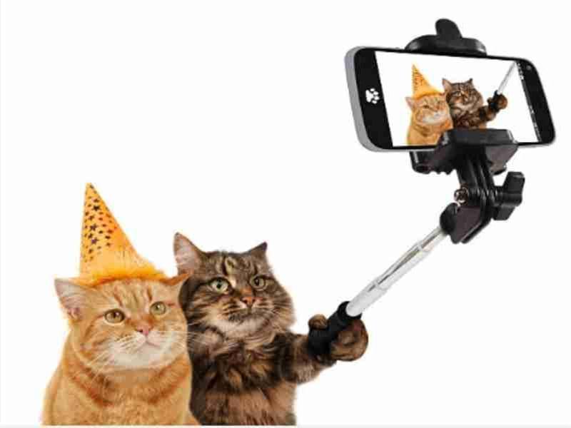 gadget cellulari